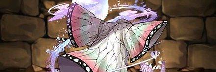 胡蝶しのぶ装備
