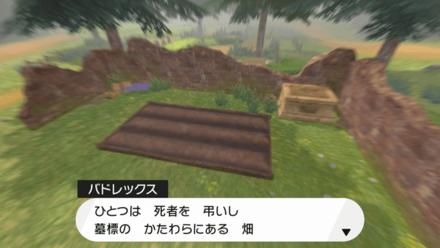 墓標のかたわらにある畑