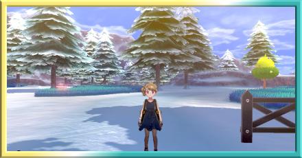 滑り出し雪原