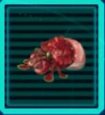 シャコモドキのアイコン