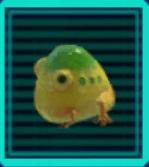 イモガエルのアイコン