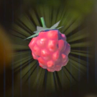 イチゴ画像