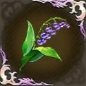 楽園の深潜花の画像