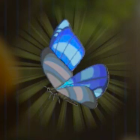 Winterwing Butterfly Icon