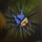 ツルギカブトの画像