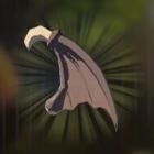 キースの羽の画像