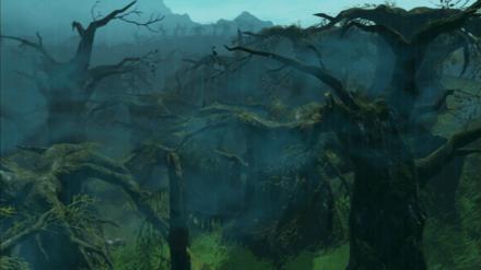 コログの森解放戦