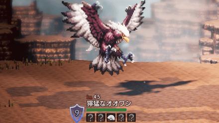 獰猛なオオワシ(LV45)