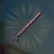 近衛の剣画像