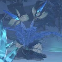 霜に覆われた奇跡の樹