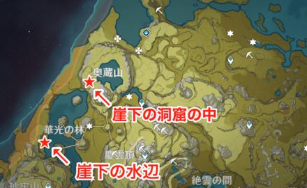 奥蔵山・華光の林