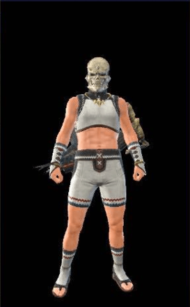 Skull Visage Layered Armor Piece (Hunter)
