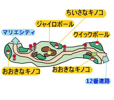 11番道路のマップ画像