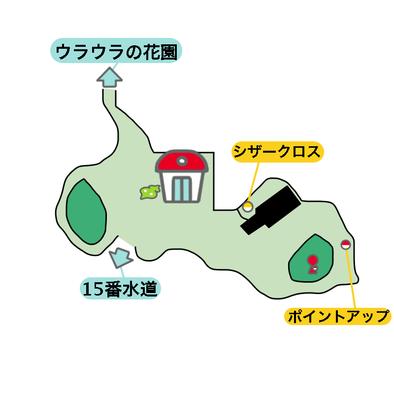 16番道路のマップ画像