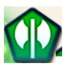 FEヒーローズの緑竜アイコン