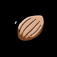 種アイコン.png