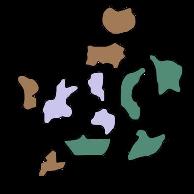 モンハンダブルクロス密林のマップ
