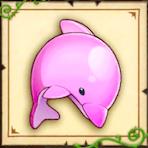 イルカ番長