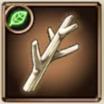 きれいな枝